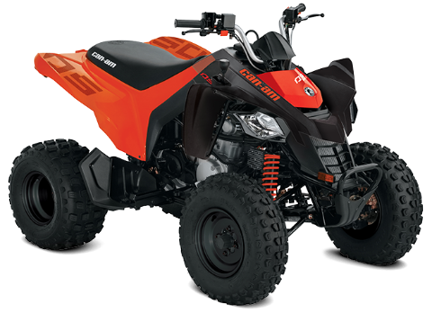 youth ds 250 atv 2020 price \u0026 specs can am can am Honda Rancher ATV