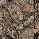Camouflage Mossy Oak Break-Up Country